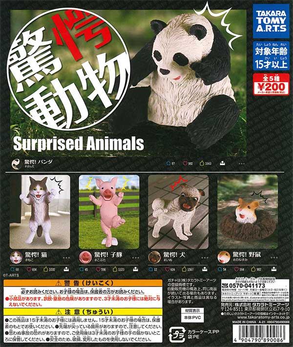 驚愕!動物 (50個入り)
