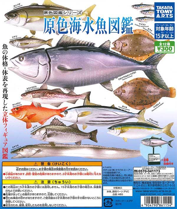 原色図鑑シリーズ 原色海水魚図鑑 (40個入り)