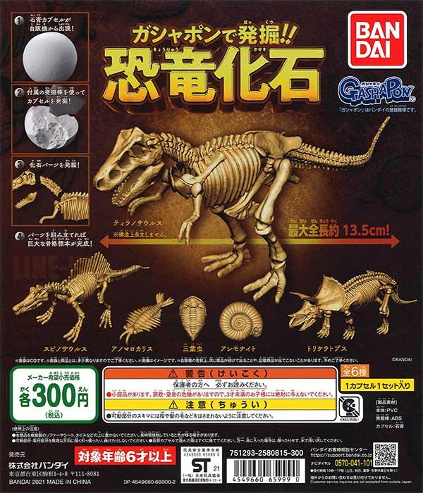 ガシャポンで発掘!恐竜化石 (40個入り)